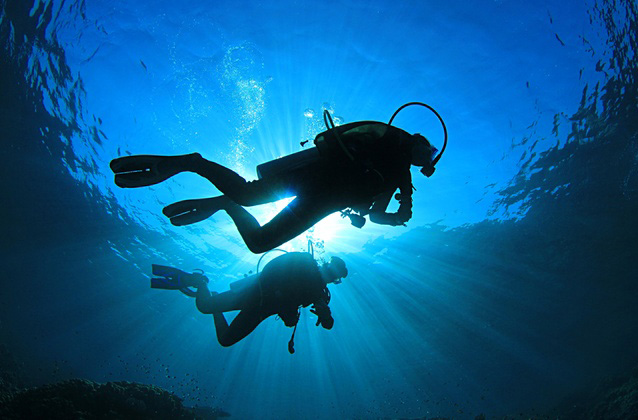 SCUBA Diving in Crystal River and Gulf of Mexico